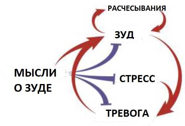порочный круг развития психогенного зуда
