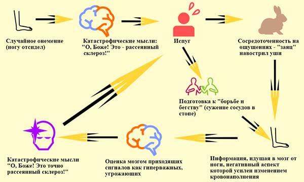 порочный круг развития онемения на нервной почве