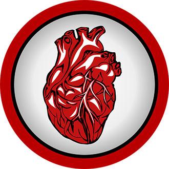 изображение сердца